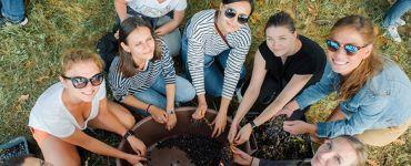 Вршац - виноградарский район
