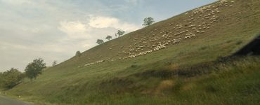 Тителски холм