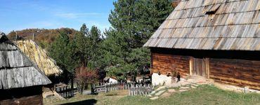 Музей под открытым небом, Старая деревня Сирогойно