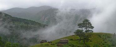 Мокра гора
